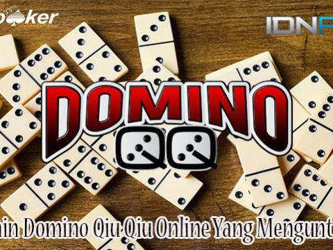 Cara Main Domino Qiu Qiu Online Yang Menguntungkan